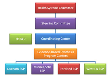 Organizational Structure of the Evidence-based Synthesis Program